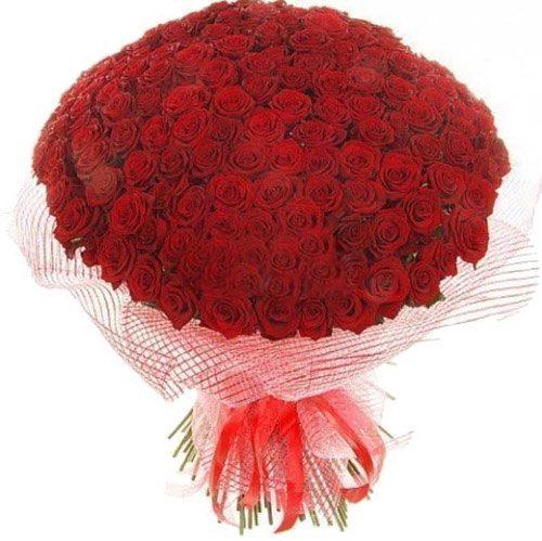 букет 201 красная роза фото