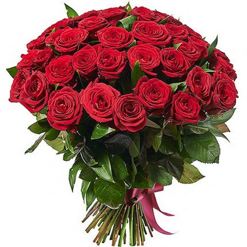 букет цветов 51 красная роза