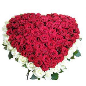 101 роза сердцем - красная и белая