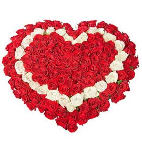 101 роза сердцем - красная, белая букет