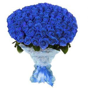 101 синяя роза фото