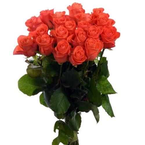 "букет 21 роза ""Вау"" фото"