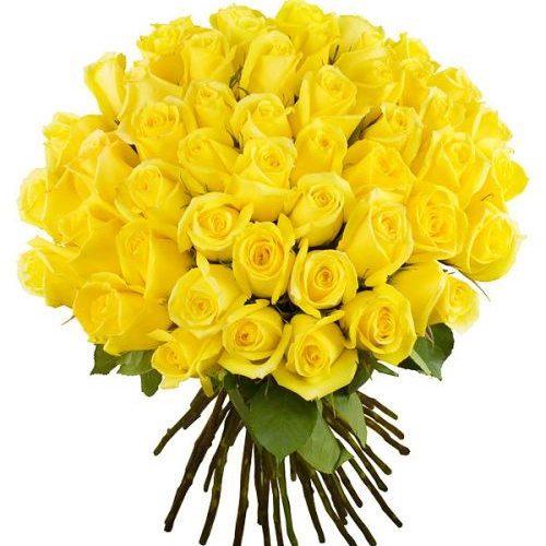 букет 51 желтая роза фото