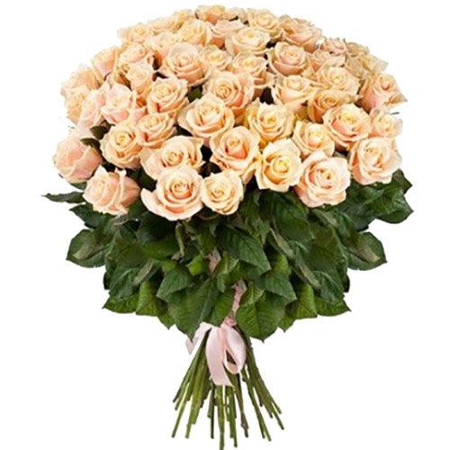 51 кремовая роза букет