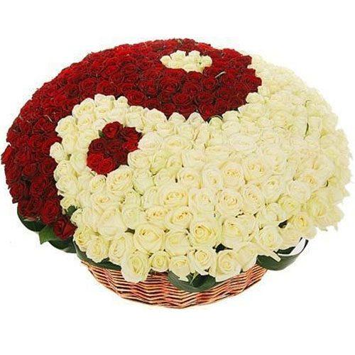 "101 роза ""Инь-Ян"" в корзине букет"