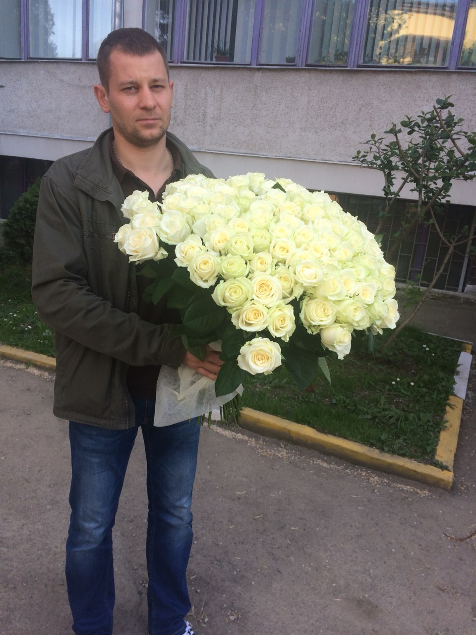 роза полтавы