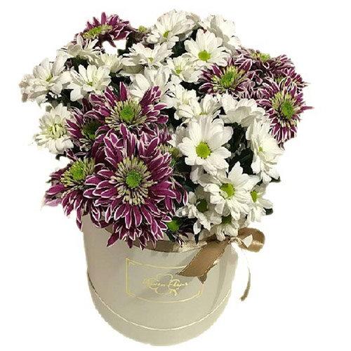 Хризантемы в шляпной коробке фото