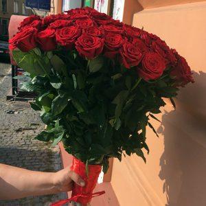 букет красных роз на день рождения 51 роза