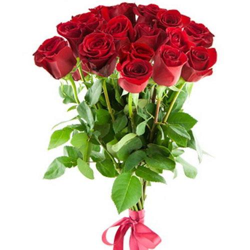 15 импортных роз фото