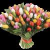 Фото товара 101 разноцветный тюльпан