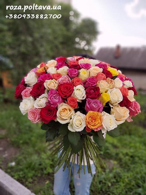 фото розы в Полтаве