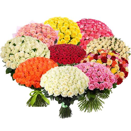 1001 роза разных сортов фото товара