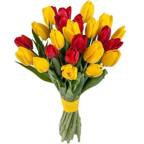 Фото товара 15 красно-жёлтых тюльпанов (с лентой)