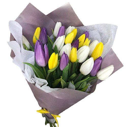 "Фото товара 25 тюльпанов ""Княгиня"""
