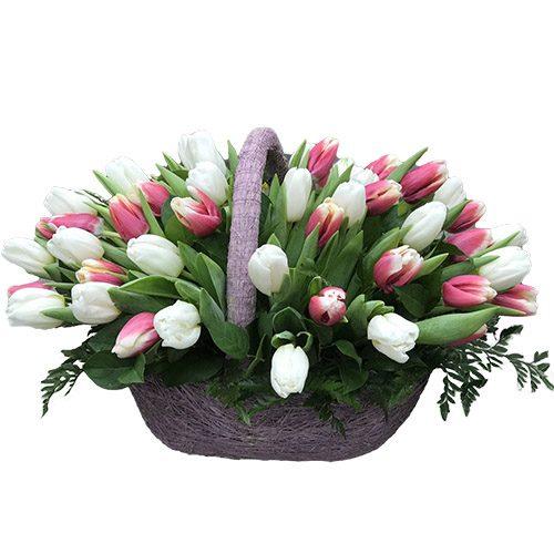 Фото товара 51 бело-розовый тюльпан в корзине