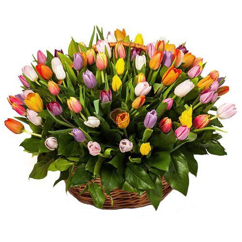 Фото товара 101 тюльпан ассорти в корзине