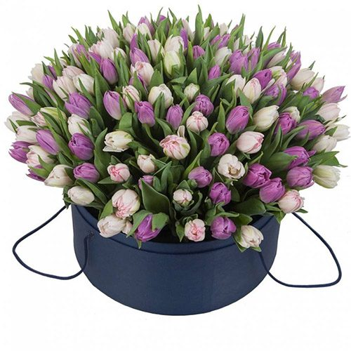 Фото товара 201 тюльпан (два цвета) в коробке