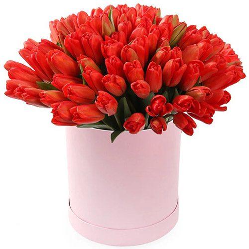 Фото товара 101 красный тюльпан в коробке